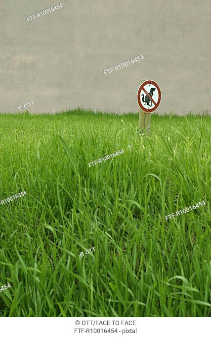 A signboard indicating restricted area for dogs is put amidst green field