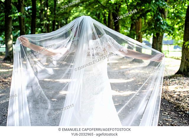 Bride with veil walks in a tree-lined