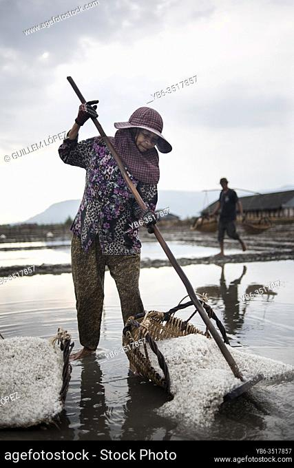 A local woman collecting fresh sea salt at the salt fields in Kampot, Cambodia