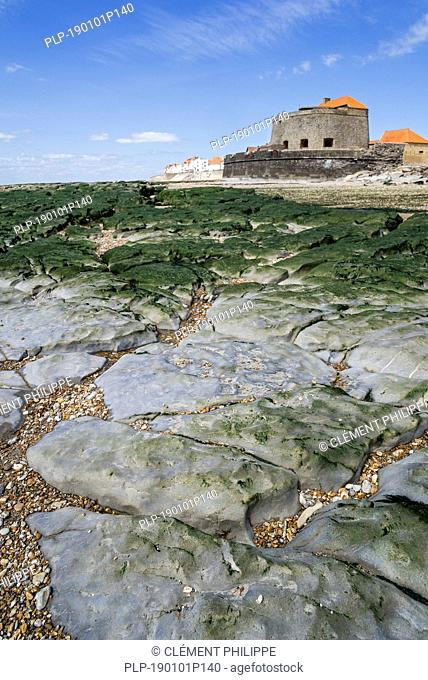 Jurassic rock layers exposed at low tide and Fort Mahon at Ambleteuse along rocky North Sea coast, Côte d'Opale / Opal Coast, France