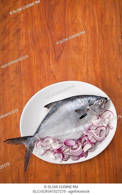 High angle view of a fish with sliced onion