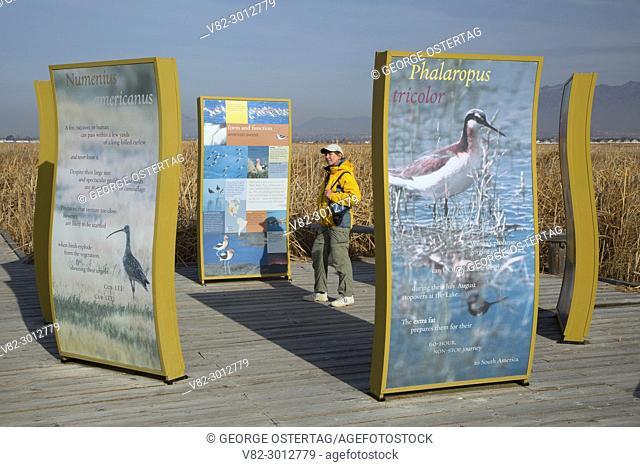 Boardwalk interpretive boards, Great Salt Lake Shorelands Preserve, Utah