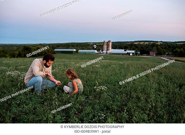 Father and daughter on farm, tending to crops