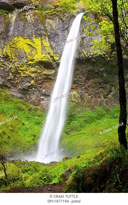oregon, united states of america, elowah falls in columbia river gorge national scenic area