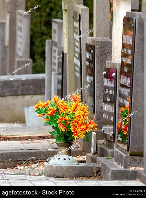 Fresh flowers on a grave in Holland