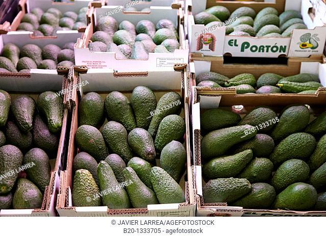 Avocados, Mercabilbao fruits and vegetables wholesale market, Basauri, Bilbao, Bizkaia, Euskadi, Spain