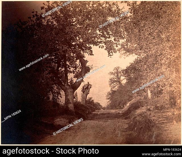 Fontainebleau, chemin sablonneux montant. Artist: Gustave Le Gray (French, 1820-1884); Date: ca. 1856; Medium: Albumen silver print from glass negative;...