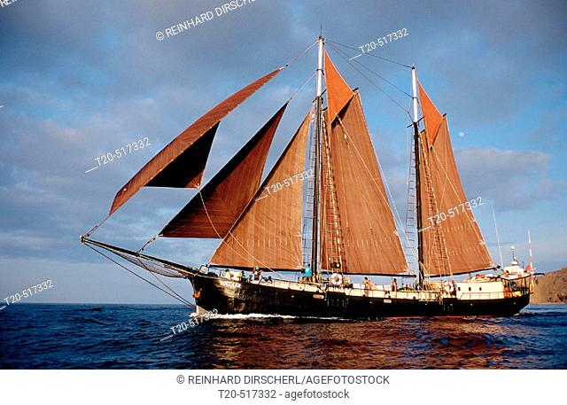 Sailing Ship, Tall Ship Adelaar. Indian Ocean, Komodo National Park. Indonesia