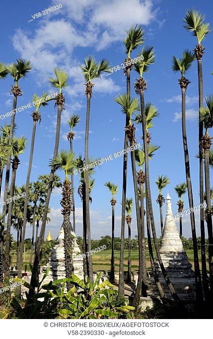 Myanmar, Mandalay surroundings, Inwa (Ava), Palm grove and stupas near Bagaya monastery