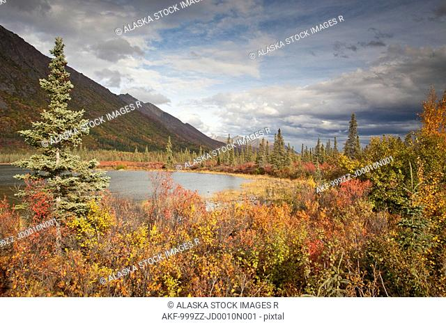 Landscape of Fall Colors with kettle pond along the Denali Highway near Cantwell, Southcentral Alaska