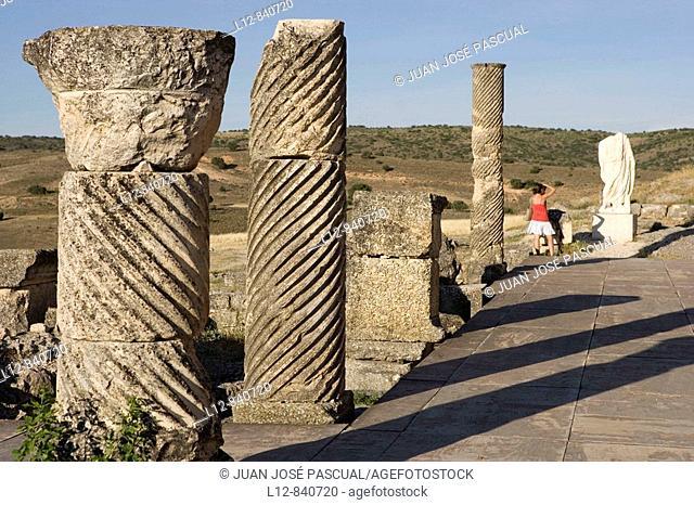 Saelices Provincia de Cuenca Castilla la Mancha España Parque arqueológico de Segóbriga Ciudad Romana,Teatro, Columnas estriadas en la escena del teatro
