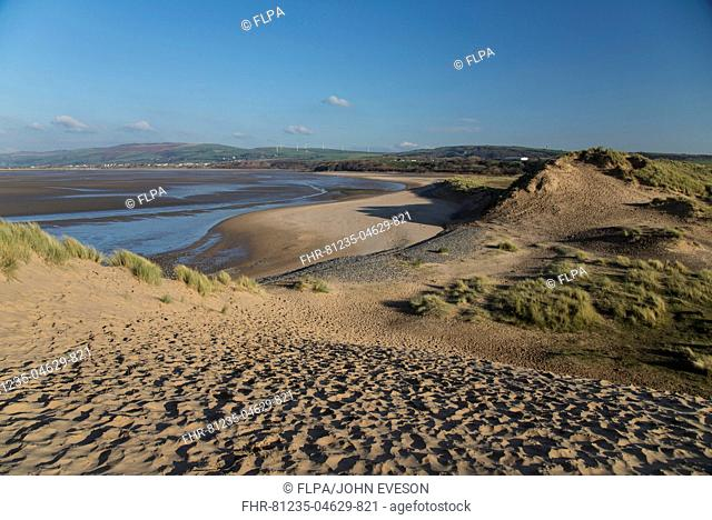 View of sand dunes and estuary, Duddon Sands, Duddon Estuary, Sandscale Haws N.N.R., Cumbria, England, November