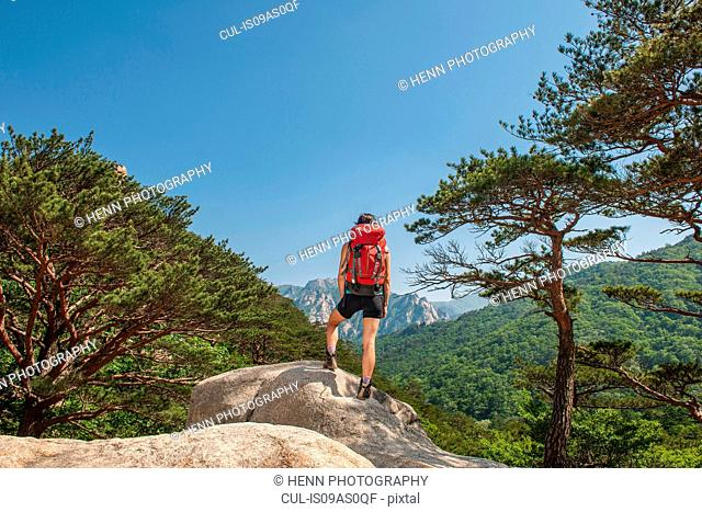 Hiker enjoying the view on the way to Mt. Ulsanbawi at Seoraksan national park, Gangwon, South Korea