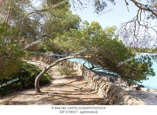 Cala Mondrago, in the south-east corner of Majorca, is considered one of the best beaches in the Balearics. Spain
