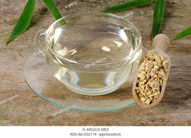 Cup of Clematis armandii stems tea, Caulis Clematidis Armandii, Mu Tong, Mutong Caulis