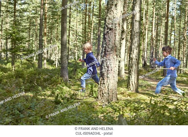Brothers running through forest carrying sticks
