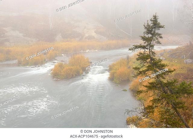Junction Creek rapids and river shoreline in morning fog, Greater Sudbury, Ontario, Canada