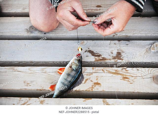 Hand with caught fish