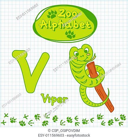 Colorful children's alphabet with animals, viper