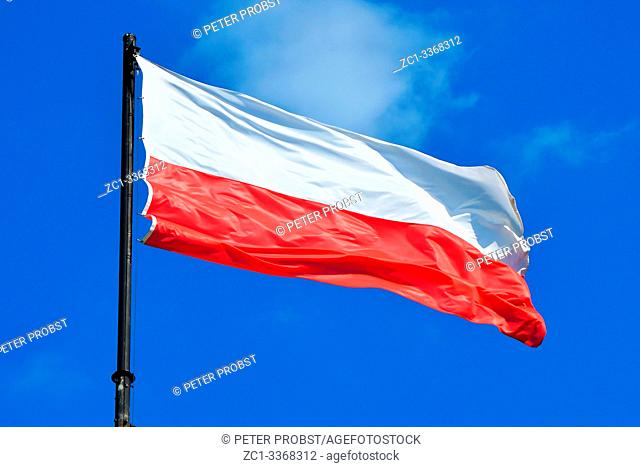 Polish national flag in Poznan - Poland
