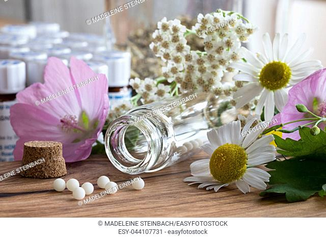 A bottle of homeopathic pills with chamomile, yarrow and other flowers on a wooden table