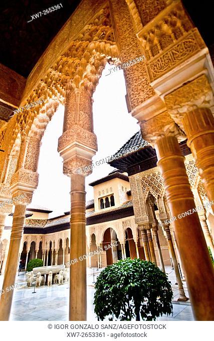 Patio de los Leones, Nazari palaces, Alhambra in Granada (Granada, Spain, Andalusia, Europe)
