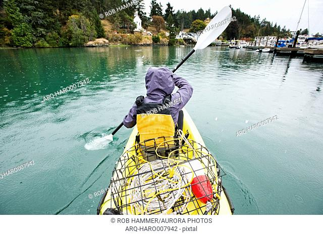 A Girl With A Crab Pot On Kayak At Roche Harbor On San Juan Island
