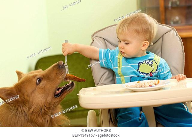 Own child dog Stock Photos and Images | age fotostock