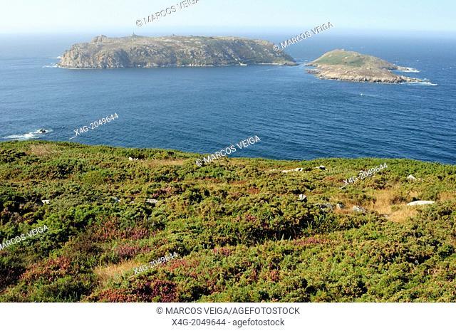 Sisargas islands, a seabird and marine heaven in front of Cape San Adrian. Malpica de Bergantiños, Galicia, Spain