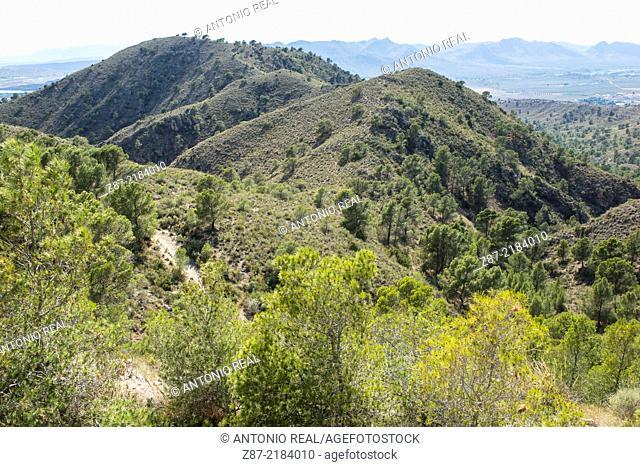 Pitón Volcánico de Cancarix Natural Monument, Hellín, Albacete province, Castilla-La Mancha, Spain
