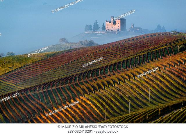 Autumn Vineyards on the hills, at the bottom the Castle of Grinzane Cavour wrapped in fog