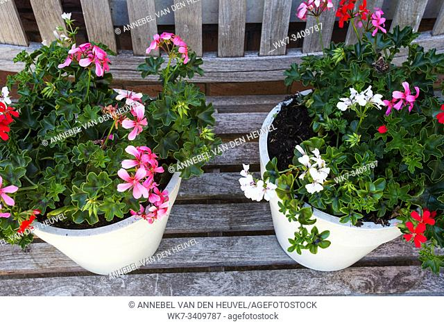 Two garden pots filled with colorful flowers on a wooden bench summer