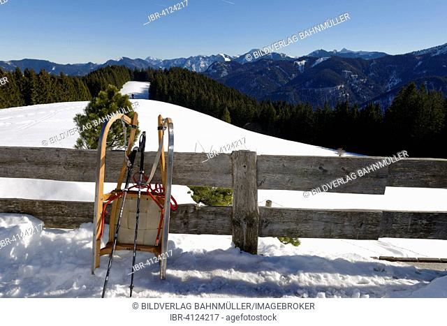 Sled, toboggan on the Aueralm alp in winter, hike from Bad Wiessee to the Aueralm, Tegernsee region, Upper Bavaria, Bavaria, Germany