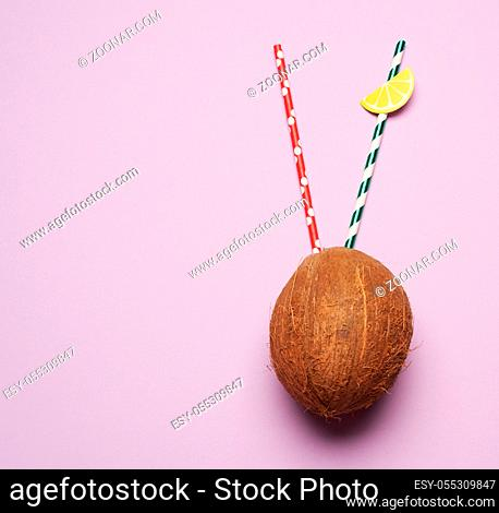 ripe whole round coconut on a purple background, top view