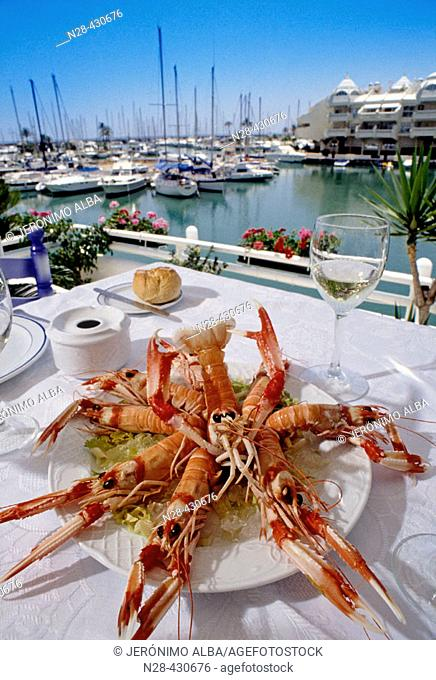 Lobsters dish in restaurant by marina, Benalmádena. Costa del Sol, Málaga province. Andalusia, Spain