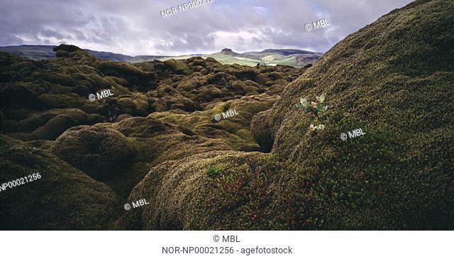 A lot of hills