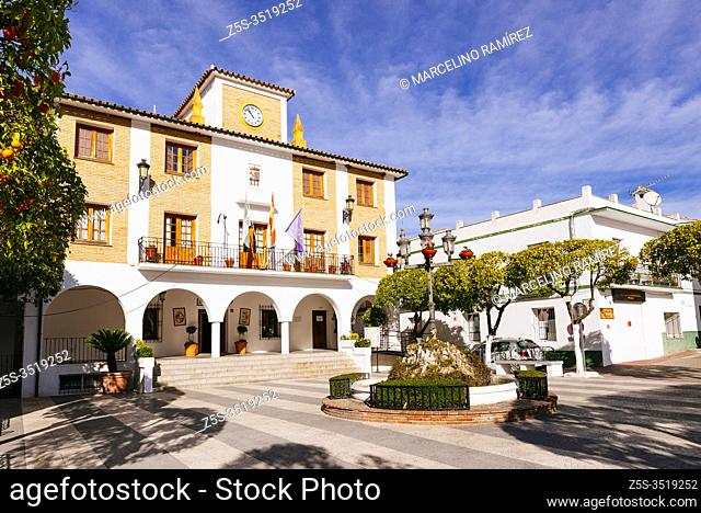 Orange trees in the Plaza de la Constitucion and El Bosque town hall. Orange trees are widely used for street ornamentation and to provide shade