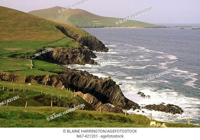 Dingle peninsula. Co. Kerry, Ireland