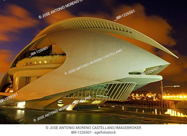 Palace of Arts Reina Sofia, by S. Calatrava, City of Arts and Sciences, Comunidad Valenciana, Valencia, Spain, Europe