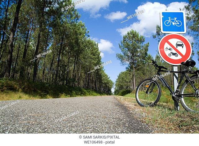 Bicycle parked against a road sign on a bicycle track passing through the Landes forest, France