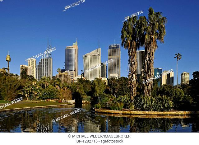 Sydney TV Tower, Skyline Central Business District, Deutsche Bank, Royal Botanical Gardens, The Domain, Sydney, New South Wales, Australia