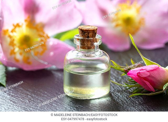 A bottle of essential oil with fresh dog rose flowers