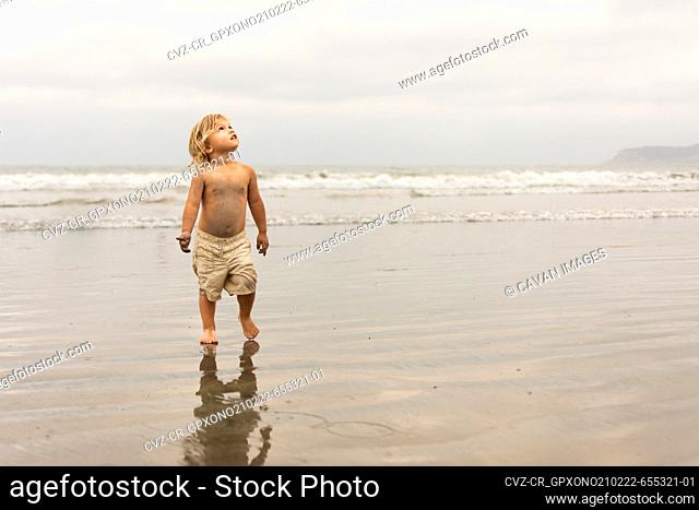 Blonde toddler boy on the beach wearing khaki shorts looking up at sky