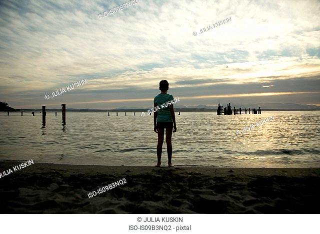 Teenage girl standing on beach, looking at view, rear view