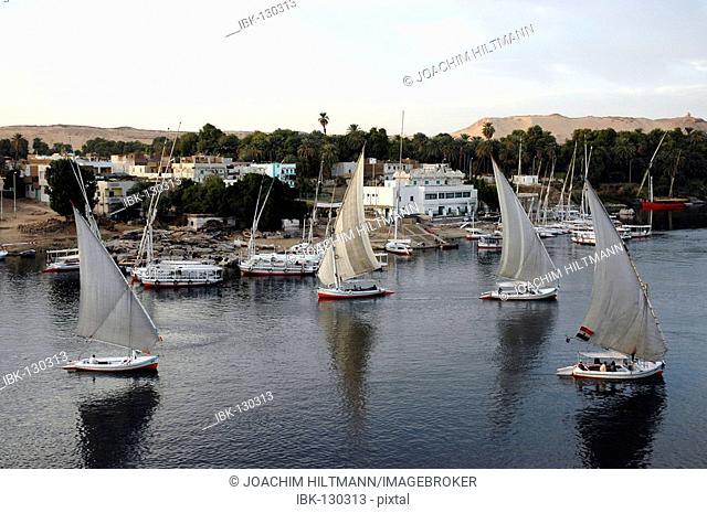 Sailing boats on the Nile, Aswan, Egypt, Africa