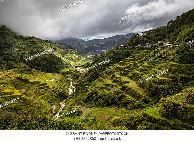 The Banaue Rice Terraces Viewed From The Banaue Viewpoint, Banaue, Luzon, The Philippines