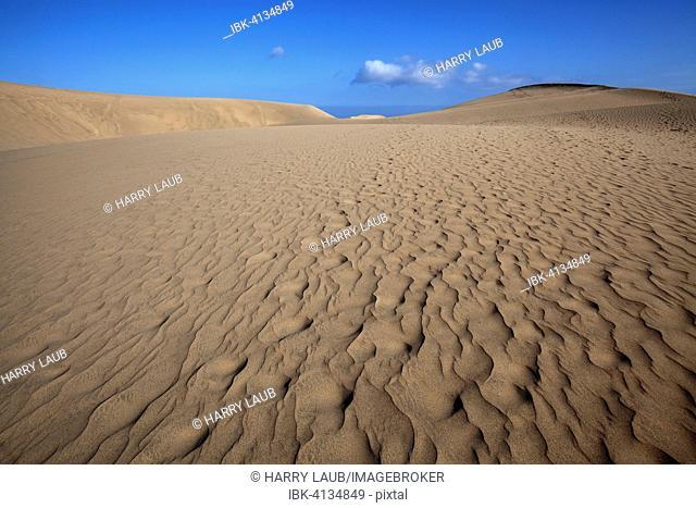 Dunes, Maspalomas Dunes Nature Reserve, Gran Canaria, Canary Islands, Spain