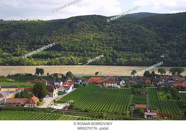 Vineyards around Unterloiben Drnstein, view to Danube