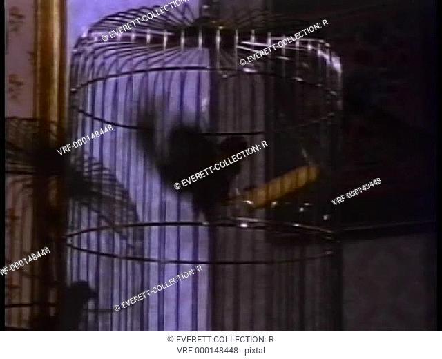 Nervous caged bird