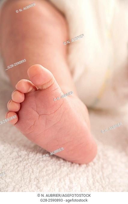 Little leg and foot of baby boy 2weeks old